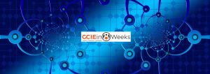 cciein8weeks-com-nfvi-blog-post