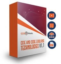 all in one ccie routing and switching r&s 400-101 v5.1 training bundle for ccie and ccde written and lab exam