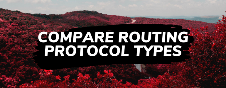 Compare Routing Protocol Types