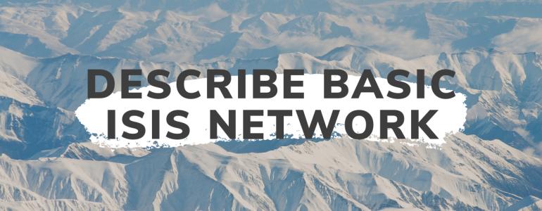 Describe Basic ISIS Network