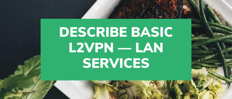 Describe basic L2VPN — LAN services