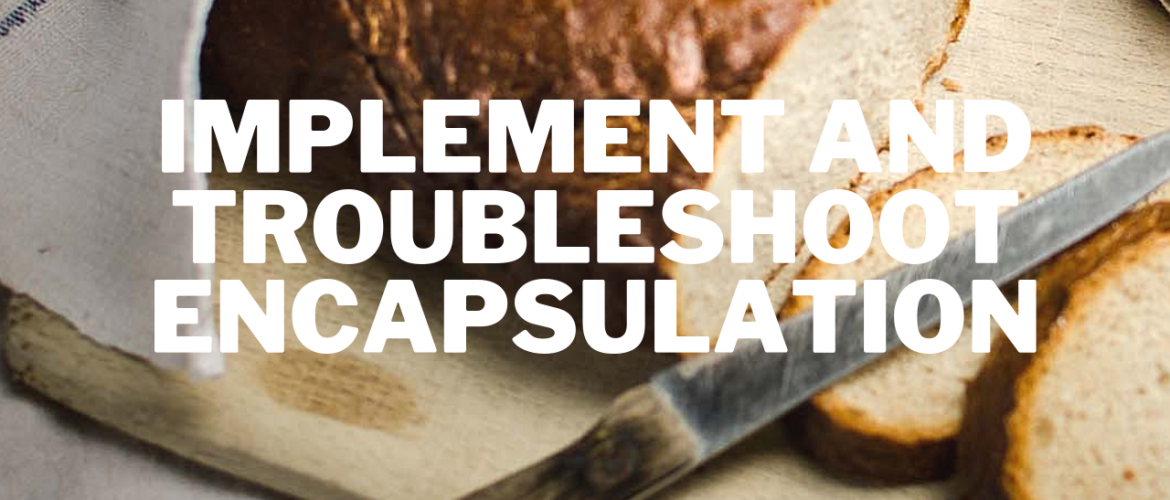 Implement and Troubleshoot Encapsulation